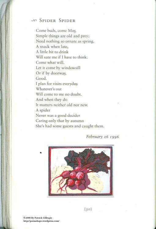 Page 30 Spider Spider