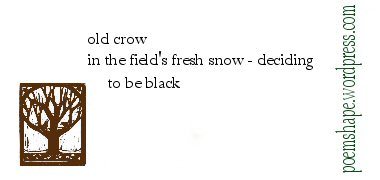 haiku-old-crow