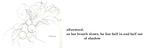 haiku - as her breath slows