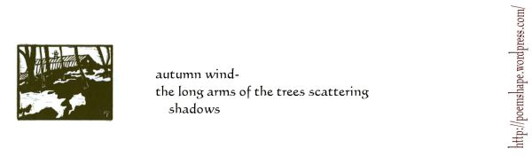 haiku- shadows