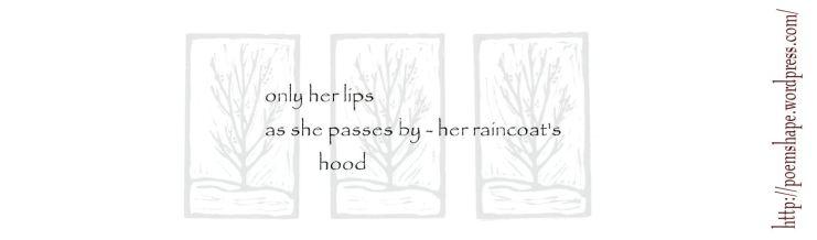 haiku- autumn rain