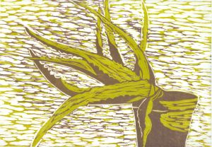 Aloe (Green & Brown) (Block Print)