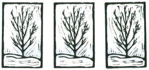 Berry Bush (Block Print)