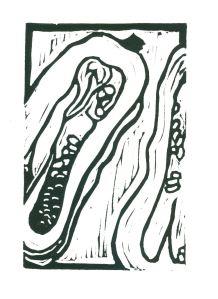 Delicata Squash (B&W)  (Block Print)