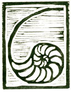 Light Nautilus (Block Print)