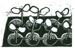 Seedlings (Block Print)