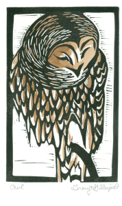 Owl-by Tracy Gillespie