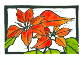Poinsettia HD-Color (Tracy Gillespie) 50 Percent