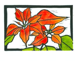 Poinsettia HD-Color (Tracy Gillespie) 50 Percent