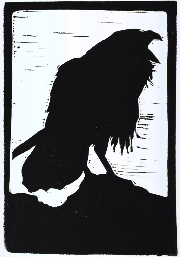 screaming crow2 small