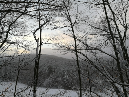 vermont snows