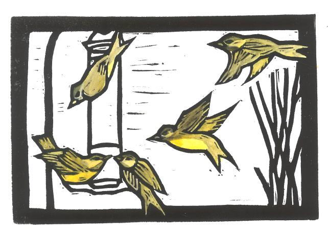 color-birds-at-feeder-print